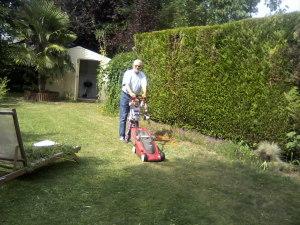 في الحديقة