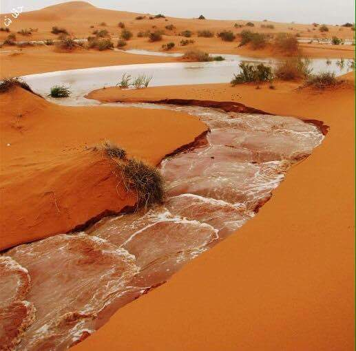 ماء الصحراء 1